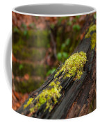 Forest Woods Coffee Mug