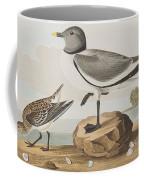 Fork-tailed Gull Coffee Mug