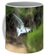 Forster's Tern 5744-092217-1cr Coffee Mug