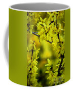 Forsythia At The Hacienda Coffee Mug