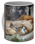 Fort Worth Zoo Sleepy Lion Coffee Mug by Robert Bellomy