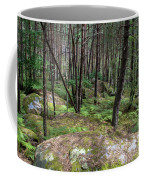 Fountainbleau Forest Coffee Mug