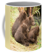 Four Bear Cubs Looking In Same Direction Coffee Mug
