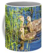 Four Goslings Coffee Mug