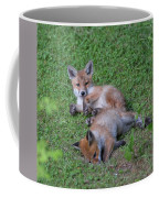 Fox Cubs Chilling Out Coffee Mug