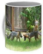 Fox Family Coffee Mug by Deleas Kilgore