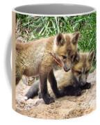 Fox Feather Play Coffee Mug