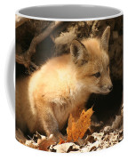 Fox Kit At Entrance To Den Coffee Mug