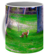 Fox Of Boulder County Coffee Mug