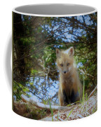 Fox Pup112 Coffee Mug