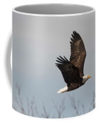 Fox River Eagles - 24 Coffee Mug