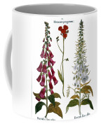 Foxglove And Hawkweed Coffee Mug