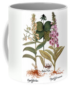 Foxglove And Herb Paris Coffee Mug