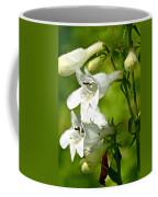 Foxglove Beardtongue - Penstemon Digitalis Coffee Mug