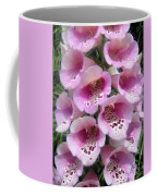 Foxglove Plant - Pink Bell Flowers. Macro Coffee Mug