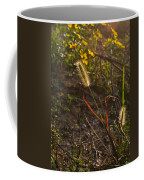Foxtail Glowing In Sun Coffee Mug