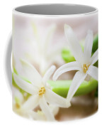 Fragile And Delicate  Coffee Mug