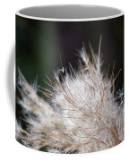 Fragile Seeds Coffee Mug