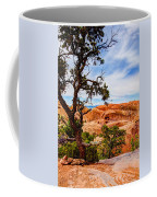 Framed Arch Coffee Mug by Chad Dutson
