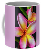 Frangipani After The Rain Coffee Mug