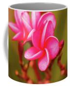 Pink Frangipani Plumeria Flowers Coffee Mug
