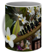 Frangipani Tree And Caterpillar Coffee Mug
