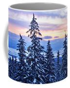 Freezing Sunset 14 Coffee Mug