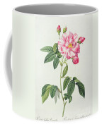 French Rose Coffee Mug by Pierre Joseph Redoute