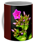 Fresh And Happy 2 Coffee Mug