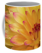 Fresh Dahlia Coffee Mug by Mary Jo Allen