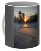 Fresh Deer Tracks At Sunrise Coffee Mug