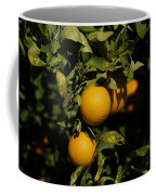 Fresh Oranges Coffee Mug