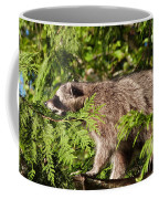 Friday May 20 2016 Coffee Mug
