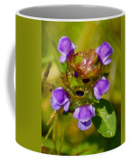 Friend Of The Flower King Coffee Mug