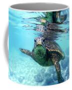 friendly Hawaiian sea turtle  Coffee Mug by Sean Davey