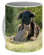 Friendships In The Animal World Is Possible Coffee Mug