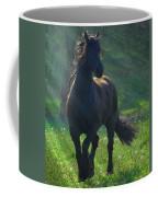 Friesian Sun Coffee Mug