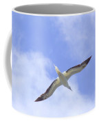 Frigatebird Coffee Mug