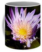 Frilly Lilly Coffee Mug