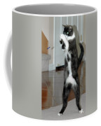 Frisbee Cat Coffee Mug