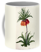 Fritillaria Imperialis Coffee Mug