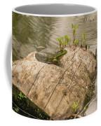 Frog 1 Coffee Mug