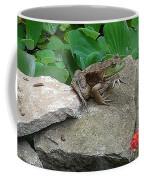 Frog On A Rock Coffee Mug