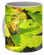 Frog On Lily Pad Coffee Mug