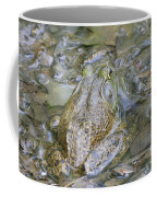 Frogs Eye View Coffee Mug