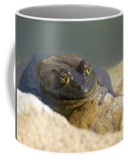 Frogzilla Coffee Mug