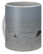 Frolicking Dolphins Coffee Mug
