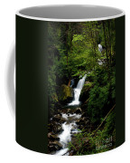From Out Of The Smoky Mountains Coffee Mug