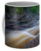 From The Top Of Temperence River Gorge Coffee Mug