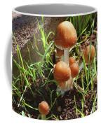 Front Pourch Mushroom Family Coffee Mug